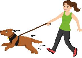 fille avec un chien qui tire Votre chien tire en laisse